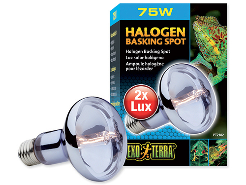 Žárovka EXO TERRA Halogen Basking Spot (75W)